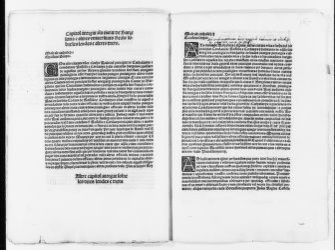 "Royal Order by King Ferdinand granting the city of Barcelona and other royal municipalities certain rights concerning the ""leudes"" (military following the King) and other rights.  [ca. 1500]."