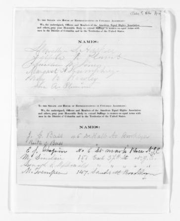 National American Woman Suffrage Association Records: Subject File, 1851-1953; American Equal Rights Association