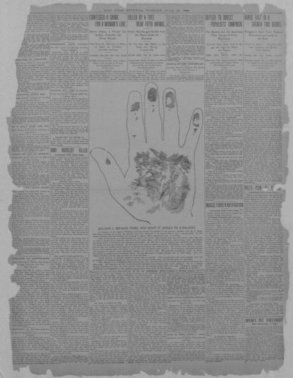 Image 2 of New York journal (New York [N Y ]), July 28, 1896