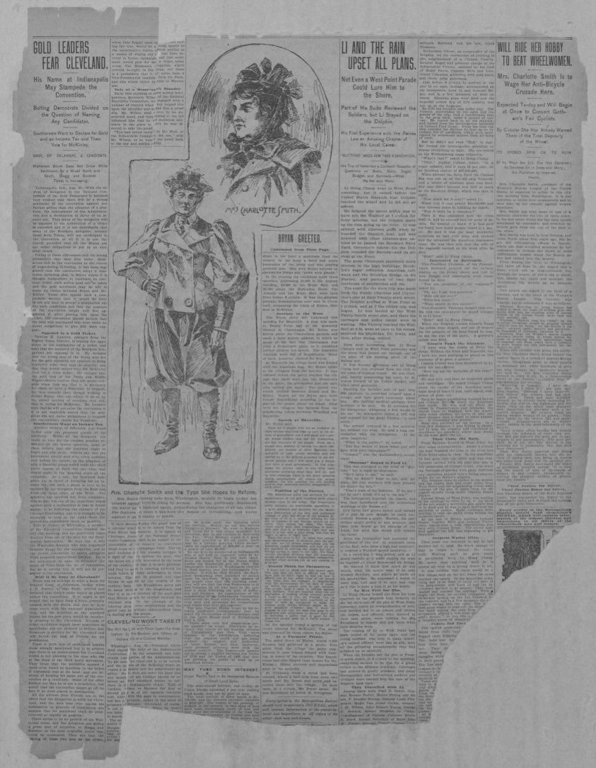 Image 3 of New York journal (New York [N Y ]), September 1, 1896