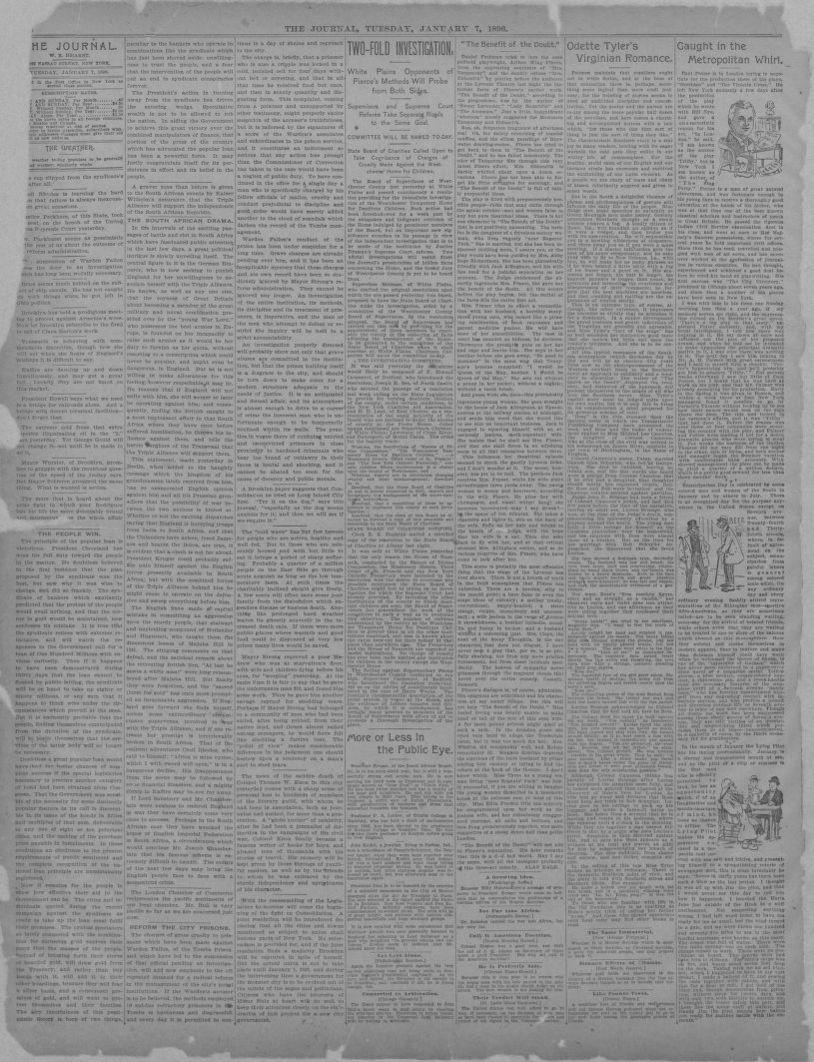 Image 6 of The journal (New York [N Y ]), January 7, 1896