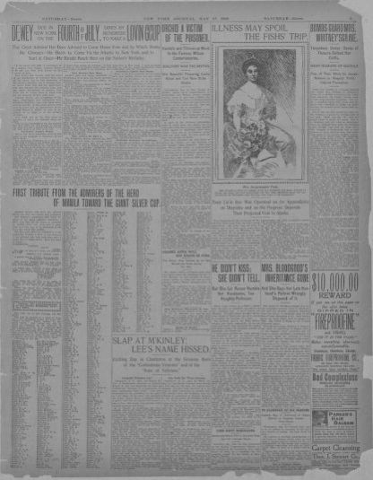 Image 3 of New York journal and advertiser (New York [N Y
