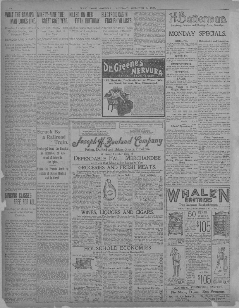 Image 20 of New York journal and advertiser New York [N Y