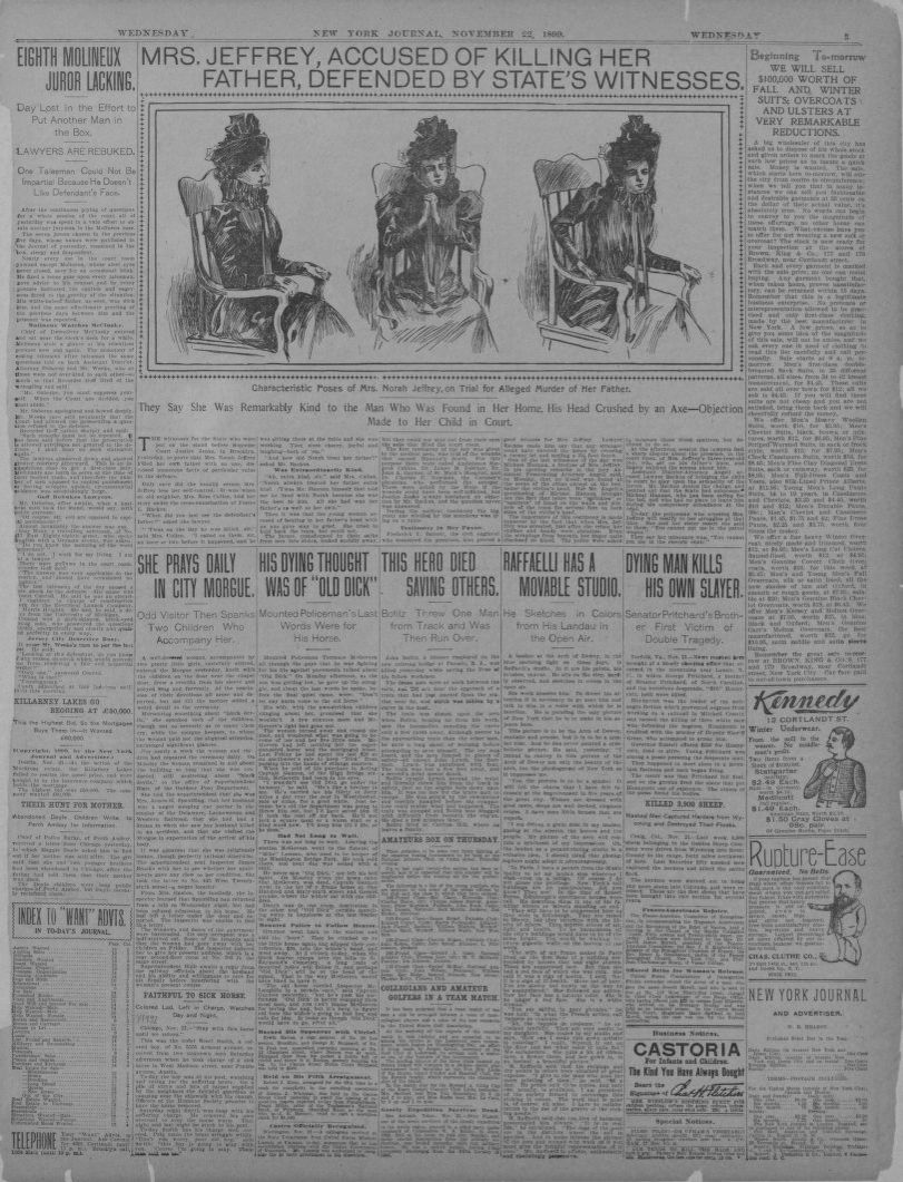 image 5 of new york journal and advertiser new york ny november 22 1899 library of congress