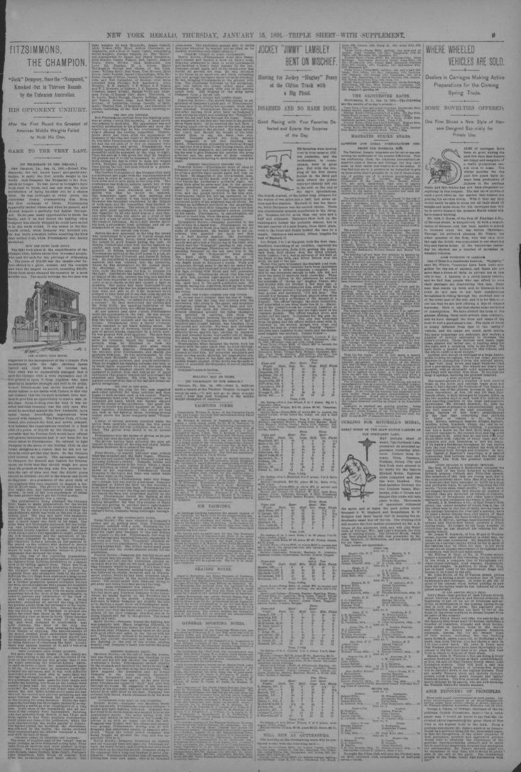 fdb49d709 Image 9 of The New York herald (New York  N.Y. )