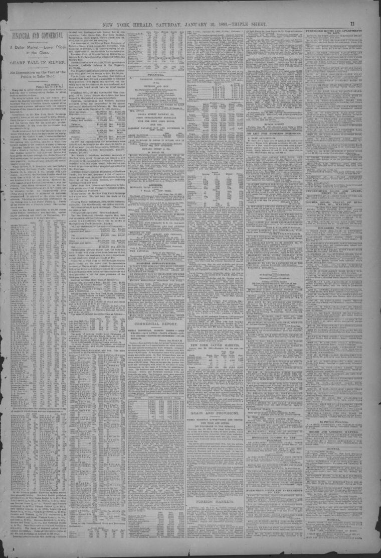 Image 11 of The New York herald (New York [N Y ]), January