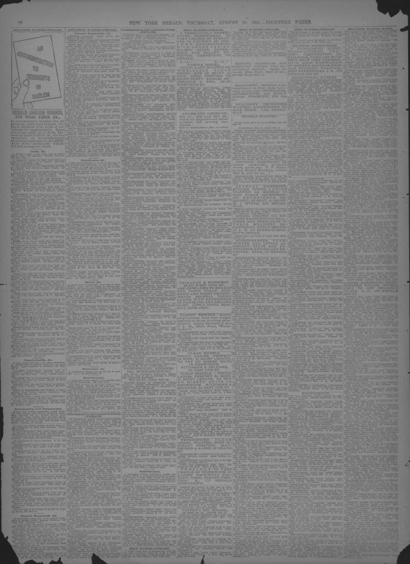 Image 16 of The New York herald (New York [N Y ]), August 20