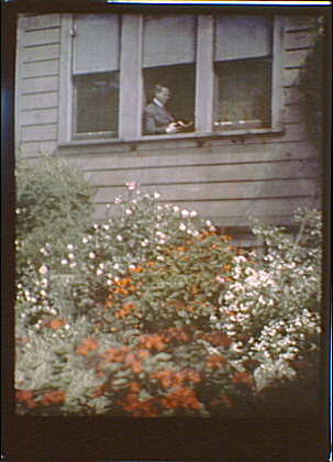 Arnold Genthe reading by the window of his house in San Francisco