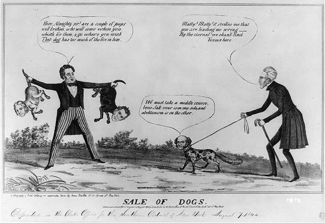 Sale of dogs