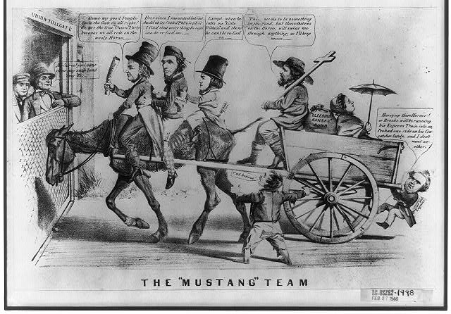 "The ""mustang"" team"