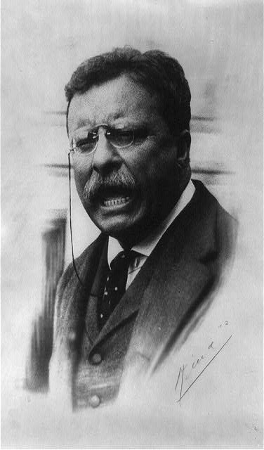 [Theodore Roosevelt, head-and-shoulders portrait, facing front, speaking]
