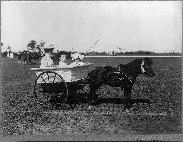 [Woman and two children in pony-drawn cart]