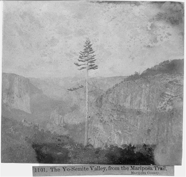 The Yosemite Valley, from the Mariposa Trail- Mariposa County