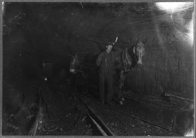Young Driver in Mine, (W. Va.) Over 10 hours a day, underground. Sept., 1908.  Location: West Virginia.