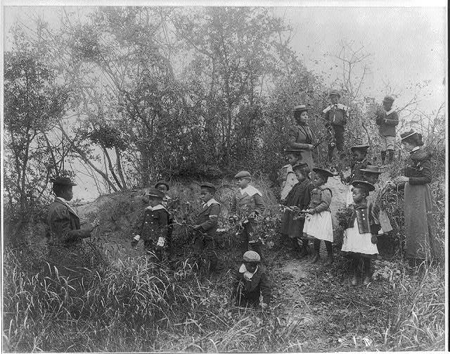[Whittier School students on a field trip studying plants,  Hampton, Virginia]