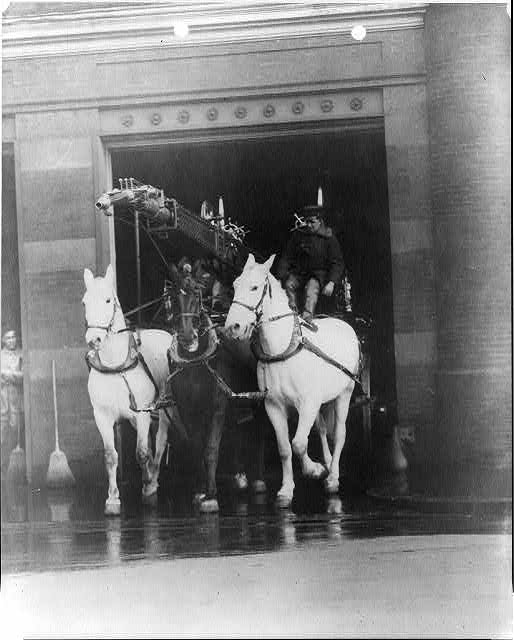 [D.C. Washington. Fire Department activities: horse-drawn hook & ladder truck leaving firehouse (folder 438)]