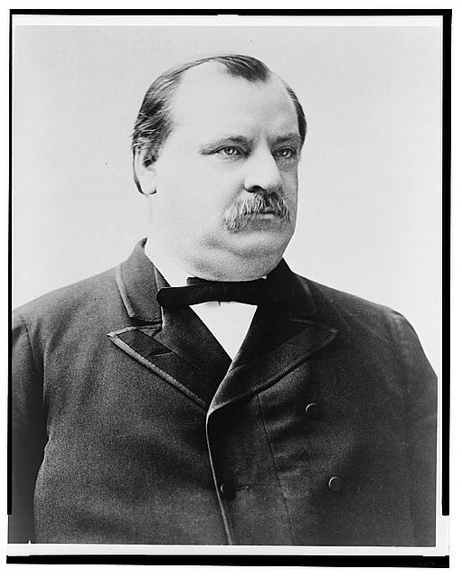 [Grover Cleveland, bust portrait, seated, facing right]