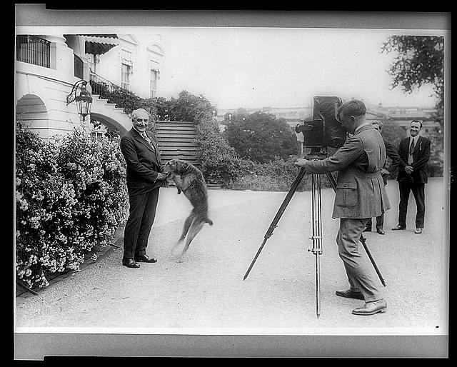 [President Harding with pet dog Laddie, being photographed in front of the White House]
