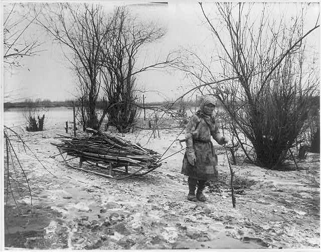 Goldes woman pulling firewood sledge