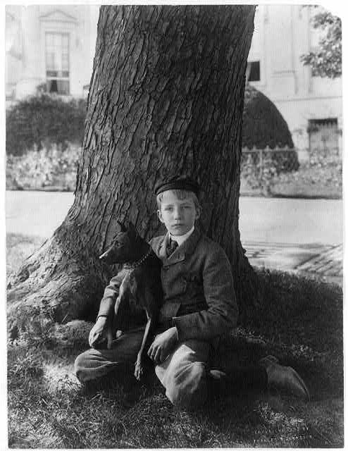 [Kermit Roosevelt seated under tree holding his dog Jack]