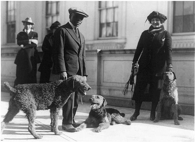 [Afro-American White House kennel keeper and woman with three airedales of Warren G. Harding]