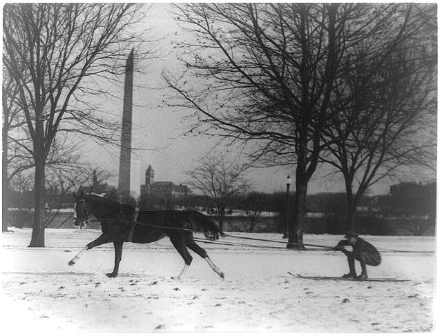 [Man on skis being pulled by horse, with Washington Monument in background]