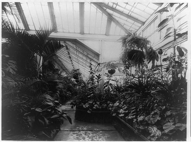 [Conservatory in the White House]