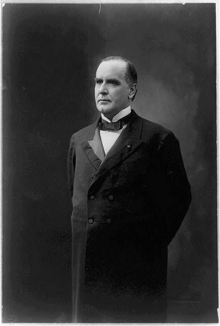 [William McKinley, half-length portrait, standing, facing left]