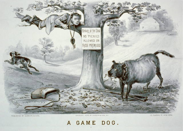 A game dog