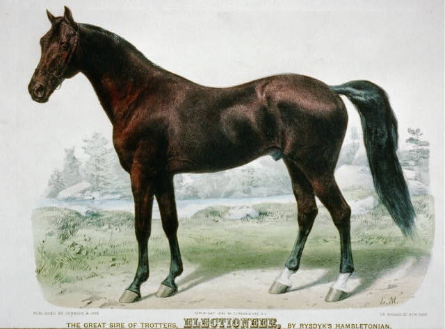 The great sire of trotters, Electioneer, by Rysdyk's Hambletonian