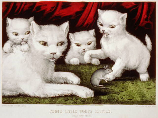 Three little white kitties: their first mouse