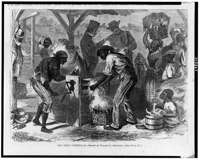 The First cotton-gin