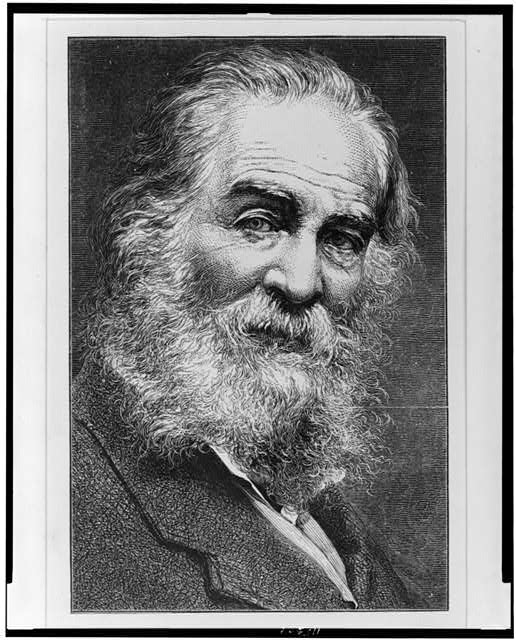 [Walt Whitman as an old man, head-and-shoulders portrait, facing right]