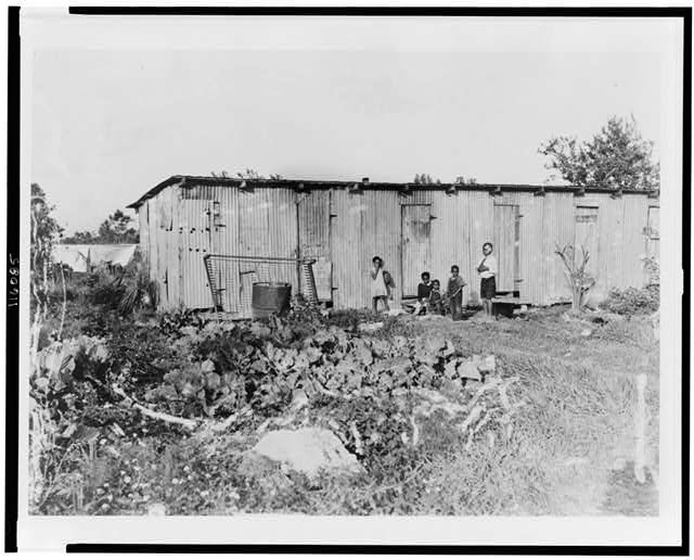 Negro transient agricultural laborers quarters. Homestead, Florida