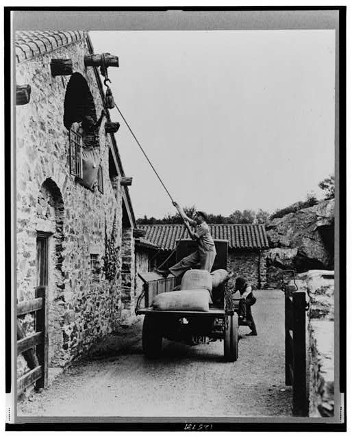 "[""Surprise Valley Farm,"" Arthur Curtiss James property, Beacon Hill Road, Newport, Rhode Island. Men loading sacks of grain from truck in courtyard into second floor doorway of barn]"