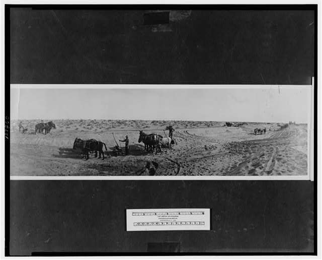 Subduing the desert, Imperial Valley, California