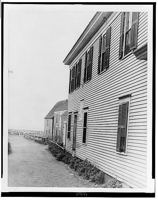[Houses in Provincetown, Massachusetts]