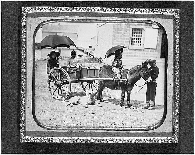 [Children of Lt. Montgomery C. Meigs, in donkey cart with dog, probably Mary Montgomery, Charles, Montgomery, and John Rodgers]