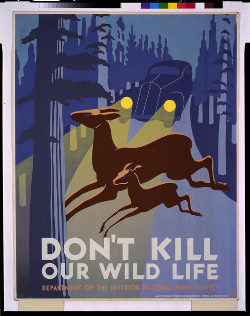 Don't kill our wild life
