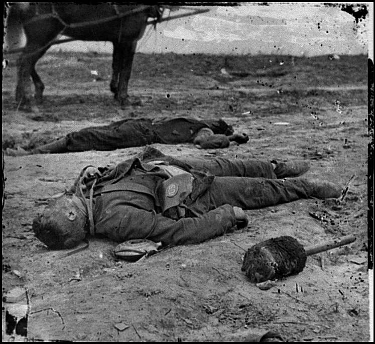 [Confederate and Union dead side by side in the trenches at Fort Mahone]