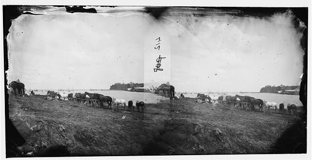 Belle Plain, Virginia. Encampment of 2nd N.Y. and 1st Mass. Heavy Artillery