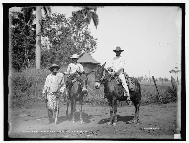 Cane cutters on a Cuban sugar plantation