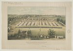 Camp Millington, Baltimore, Md. 128th Regt. N.Y.V., from Columbia & Dutchess Counties /
