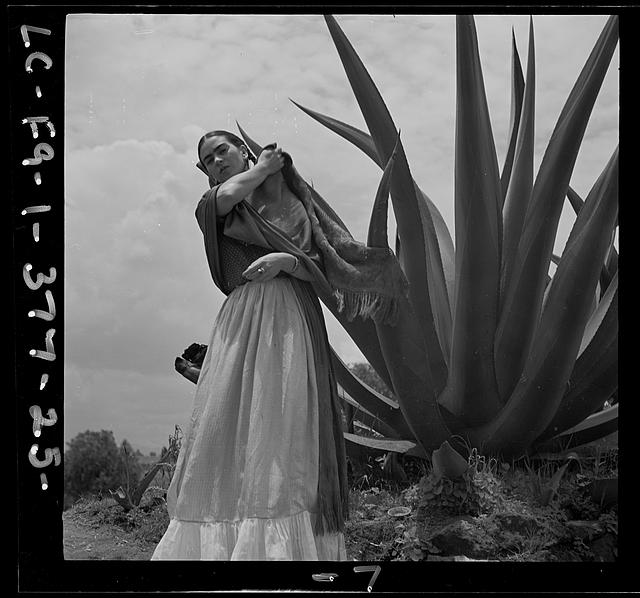 "[Frida Kahlo (Senora Diego Rivera) holding the leaf of an agave plant, during a photo shoot for Vogue magazine, ""Senoras of Mexico""]"