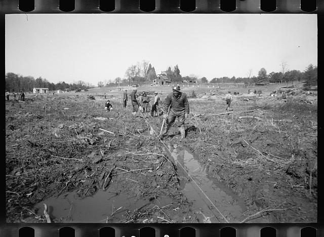 Transient workers clearing land, Prince George's County, Maryland