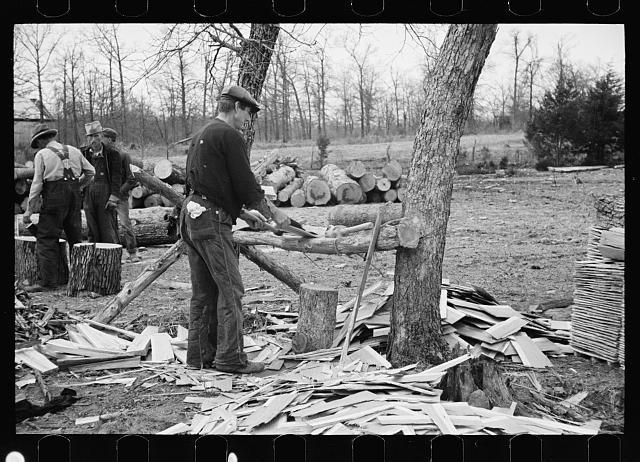 Splitting shingles, Wilson Cedar Forest, near Lebanon, Tennessee
