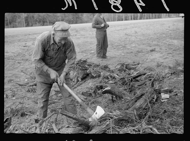 [Untitled photo, possibly related to: Lumberjack, Minnesota]