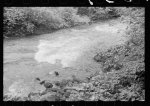 [Untitled photo, possibly related to: Mountain spring, Missouri Ozark country]