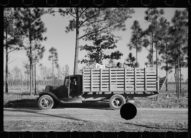 [Untitled photo, possibly related to: W.R. Hubbard and family moving their household goods on Penderlea Farms, North Carolina]