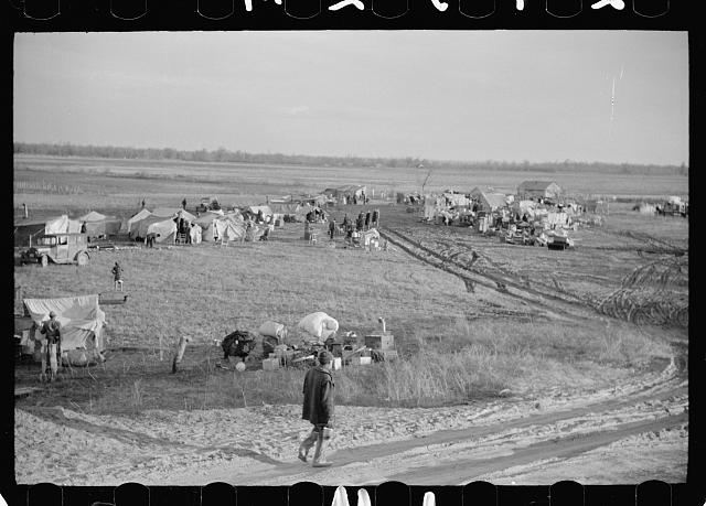 [Untitled photo, possibly related to: New Madrid County spillway where evicted sharecroppers were moved from highway, Missouri]